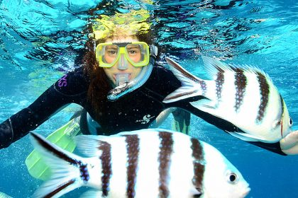 Great Barrier Reef Snorkelling Trips