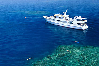 7 Day / 7 Night – Cod Hole, Ribbon Reefs & Coral Sea Adventure