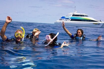 Great Barrier Reef Dive Courses