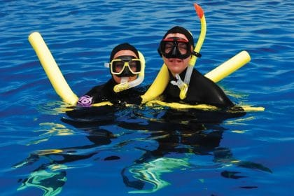 Snorkel great barrier reef